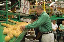 Florida Citrus Show Title Coverage: Fresh Fruit Win