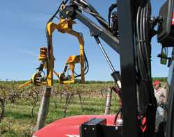 Vine Lines: Robots In The Vineyard