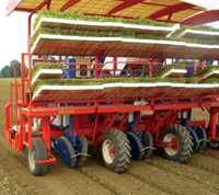 Automatic Transplanter Makes Its U.S. Debut