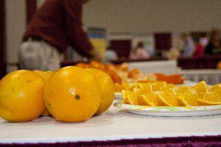 HLB Solutions Lead Agenda At 2014 Florida Citrus Show