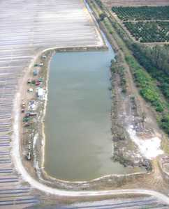 Potato BMPs Have Farmers Examining Drainage, Tailwater Storage