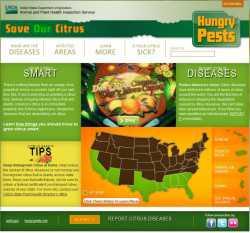 Save Our Citrus Screencap