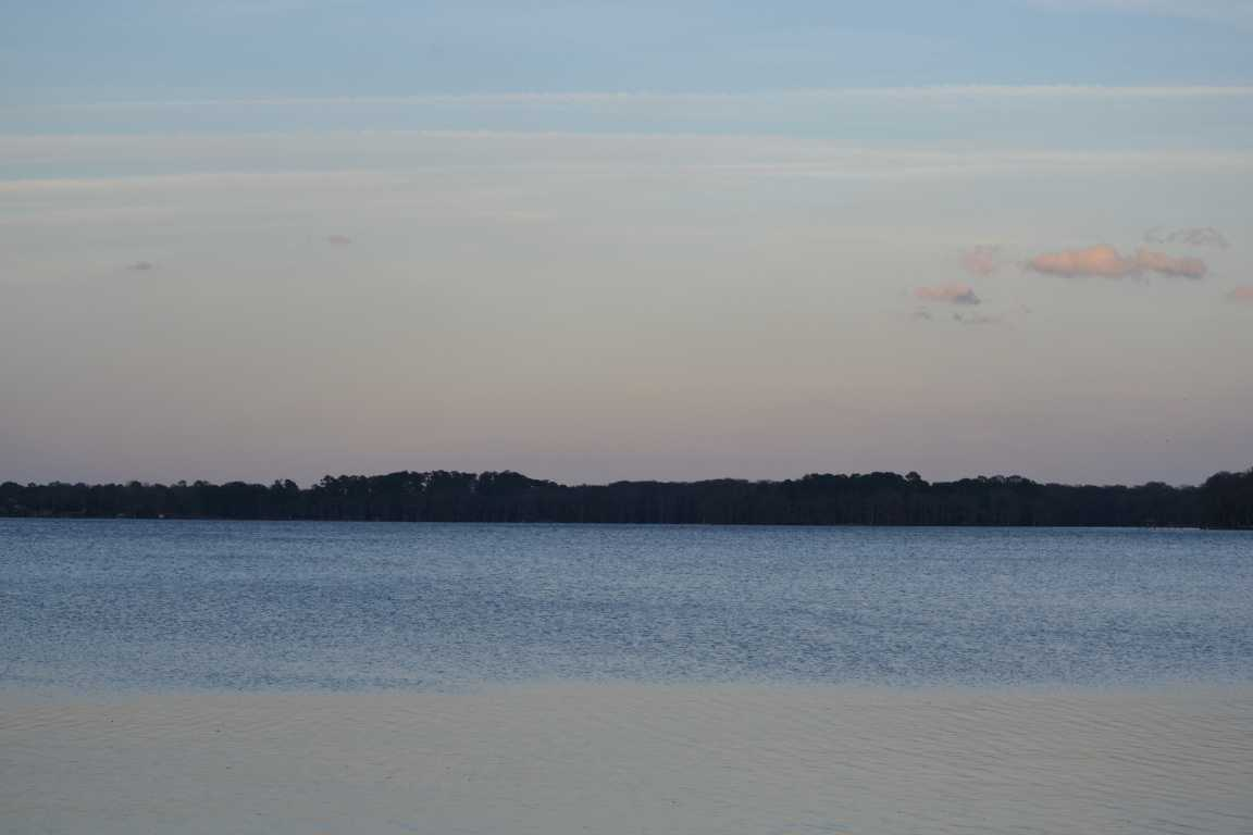 Florida Farmers Finding Ways To Cultivate An Environment Of Excellence [Opinion]