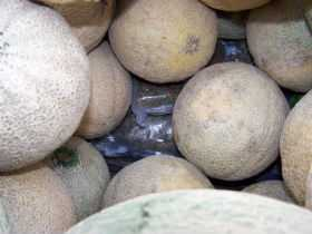 Message To Cantaloupe Growers: Minimize Your Food Safety Risks