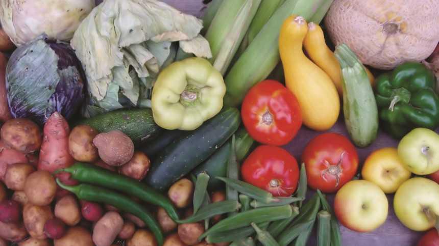 Fresh Produce Investigated In Chipotle E. Coli Outbreak