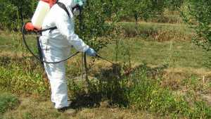 CEU Series: Precaution Needed When Working With Pesticides
