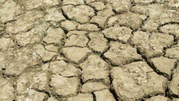 Salty soil in California