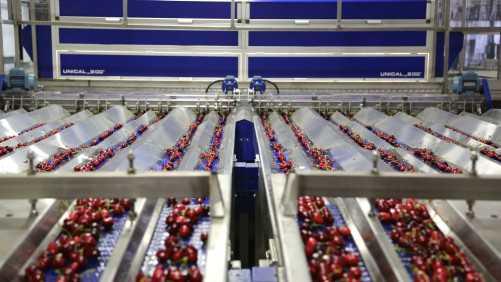 2013 Washington Sweet Cherry Production Down 36%