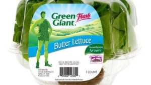 New Hydroponic Butter Lettuce Features Extended Shelf Life