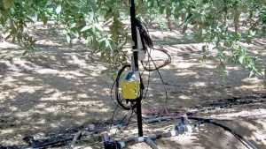 Managing Water Use With Precision Irrigation