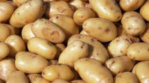 The U.S. Potato Board Receives $5 Million In Funding To Promote Potatoes