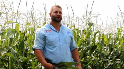 The Latest Vegetable Seed Technology A Focus For Abbott & Cobb