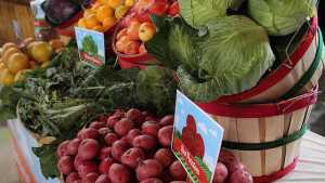 USDA Issues Updates To Food Safety Modernization Act