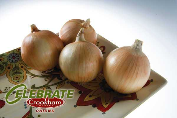 Avalon is a very sturdy, yet flexible, late intermediate Spanish onion. It allows a smooth transition from intermediate to long-day varieties with the option of mechanical harvesting. Growers enjoy its size potential, single centers, and its nice firm bulb. It shows good tolerance to pink root and Fusarium and high tolerance to bolting.