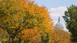 The House Passes Farm Bill
