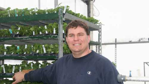 Utilizing Integrated Pest Management In The Greenhouse