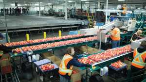 FDA Releases Preventative Controls Guidance For Small Businesses