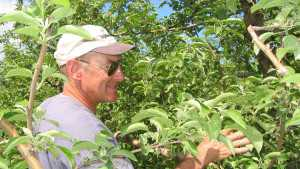 Jeff Crist: 2007 Apple Grower Of The Year