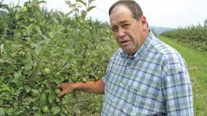 Apple Grower Of The Year Finds Success In Hard Work, Integrated Approach