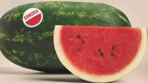 24 Sweet Watermelon Varieties [Slideshow]