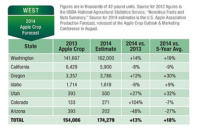 Apple Crop Outlook WEST