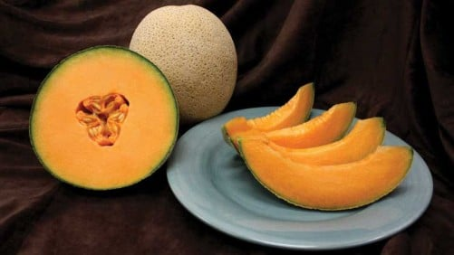 14 Stand-Out Melon Varieties [Slideshow]