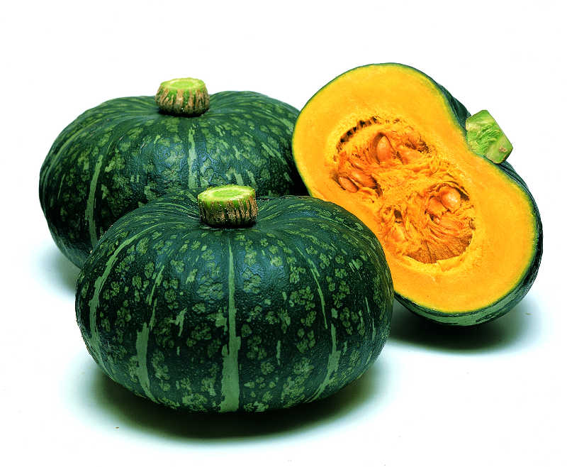 20 topnotch squash varieties slideshow growing produce