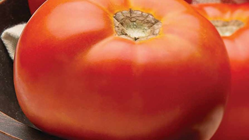 6 Savory Tomato And Pepper Varieties For Florida Growers
