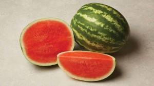 Seedway Showcases Latest Vegetable Varieties For Florida