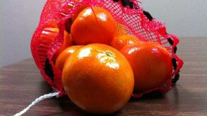 Florida Citrus Forecast Stands Firm Through Season's First Month