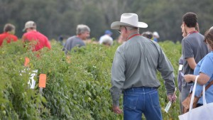 2016 Florida Ag Expo To Tackle Production, Pest Problems