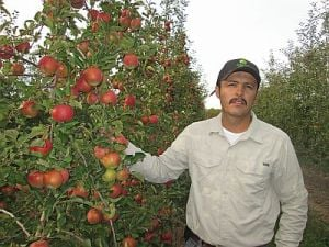 Leo Dominguez is a research  support specialist who works  at the Agricultural Research Station in Geneva, NY.