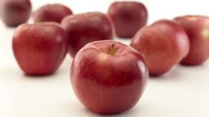 Allen To Retire From New York Apple Association