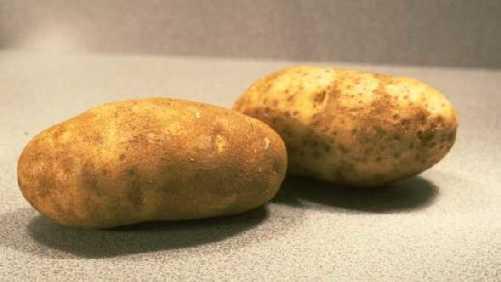 National Potato Promotion Board Updates its Name, Mission, Strategic Plan