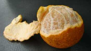 sweet-orange like hybrid peel