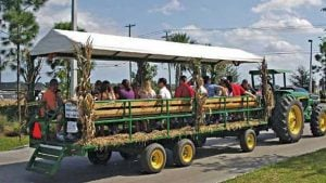 New Conference to Shine Spotlight on Central Florida Agritourism