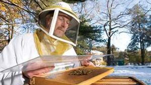 Top Beekeepers Wanted