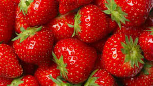University Of California Davis, California Strawberry Commission Settle Lawsuit