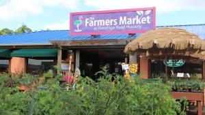 Vegetables near Flamingo Roads farmers market entrance