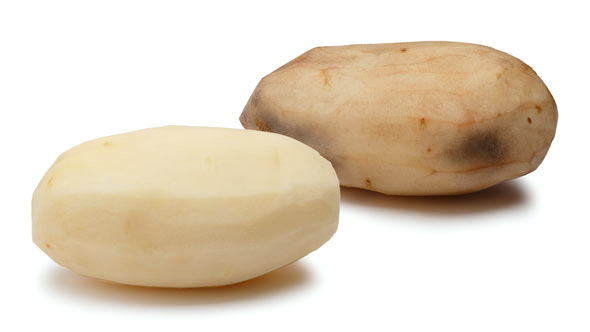 Another Genetically Engineered Potato To Be Evaluated