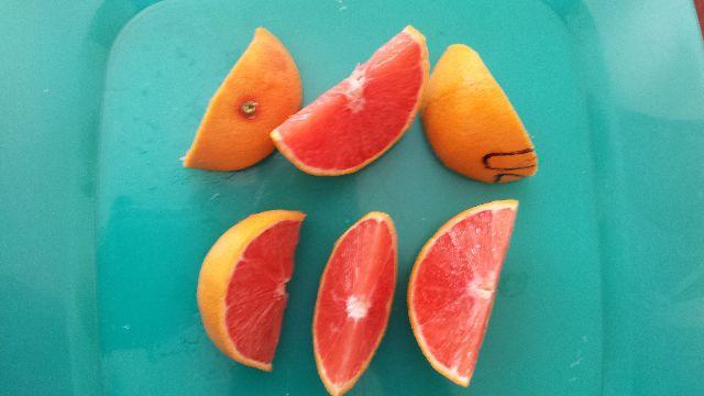 Citrus Showcase A Very Informal Varietal Tasting