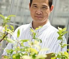 Kenong Xu (Photo credit: Robyn Wishna/Cornell University)
