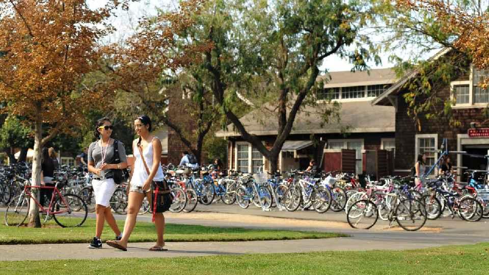 University of California-Davis