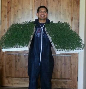 grafted growers ricardo 2_web ready