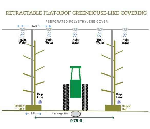 Figure 2. A retractable flat-roof greenhouse-like covering system and tree development plan for a fruiting wall narrow canopy architecture, e.g., the upright fruiting offshoots (UFO) or Super Slender Axe (SSA) system.