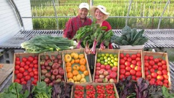 Natalie Parkell and Kevin Osburn of Vertical Horizon Farms