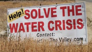 Diversification: A Response To Drought [Opinion]