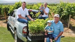 Inland Desert Nursery Is Main Source For Washington's Clean Vines