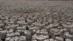 President Obama Allocates $110M For Drought-Relief
