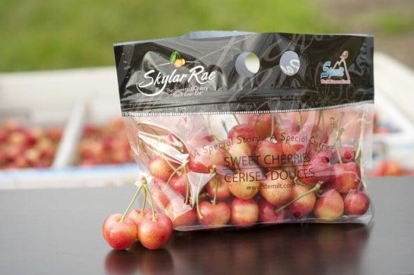 Stemilt To Release New Cherry Variety Called Skylar Rae